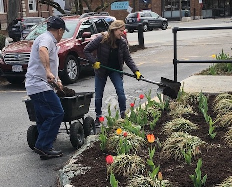 Volunteer working on Newton Center Garden
